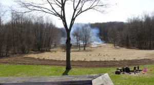 burning switcgrass field to enhance deer habitat