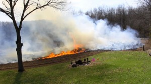 using controlled fire to improve wildlife habitat
