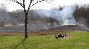 switchgrass controlled burn fire, southwest Michigan
