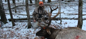 2014 michigan elk hunt - Jarrod Erdody with his 6x6 elk