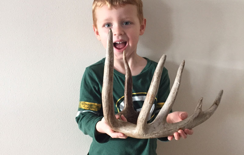 kids shed antler hunting