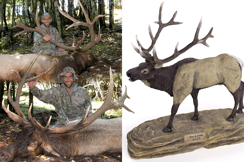 wood carving elk by John Erdody III - Jarrod's Arizona elk
