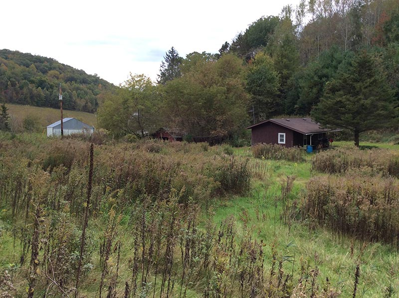 Buffalo County Hunting Land for Sale