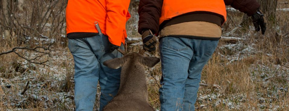 cwd wisconsin - chronic wasting disease